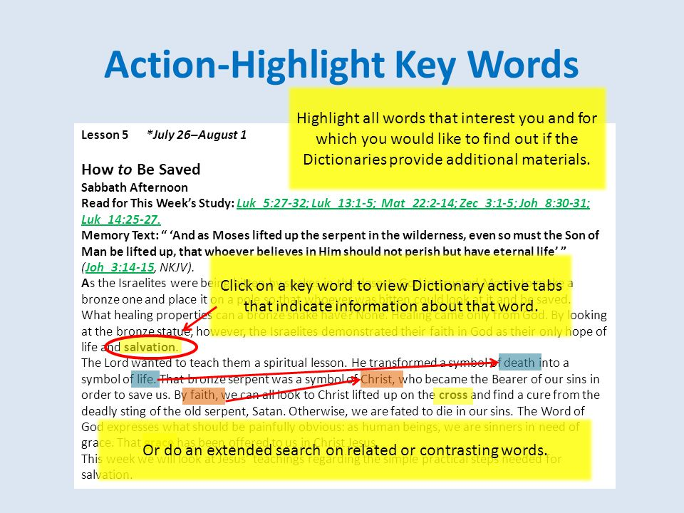Action-Commentary Window Extended Search Click on the Binoculars to search Dictionaries Click on an individual reference in left-hand window to view entry in the right-hand window; you can copy/paste from the Commentary window into the Topic Notes window Select word search parameters