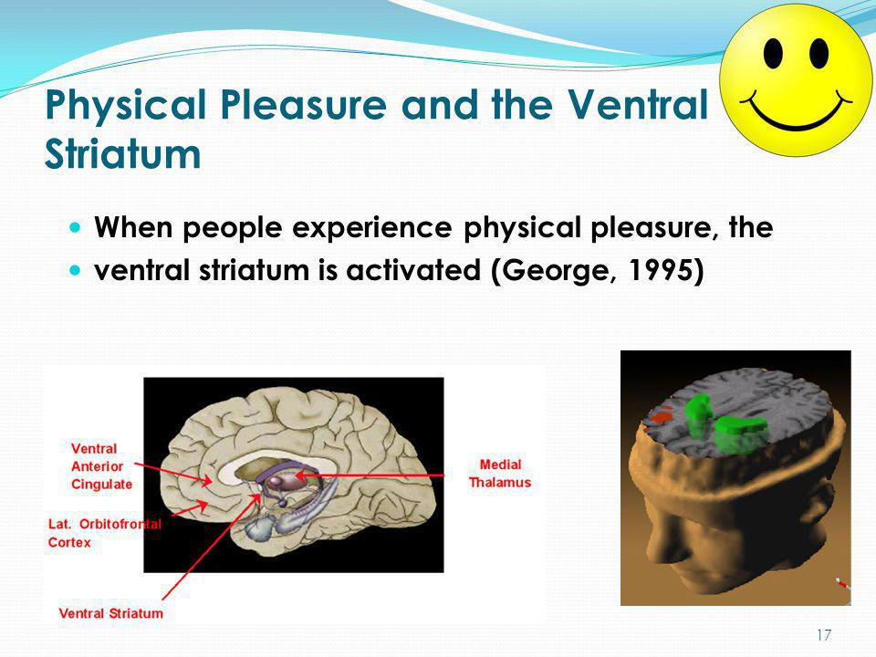 Physical Pleasure and the Ventral Striatum When people experience physical pleasure, the ventral striatum is activated (George, 1995) 17