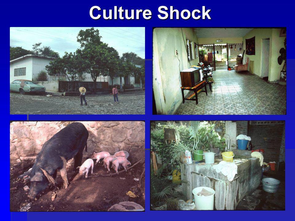 12 Culture Shock