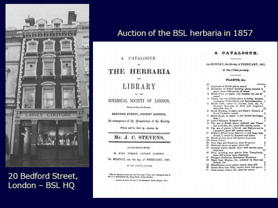 20 Bedford Street, London – BSL HQ Auction of the BSL herbaria in 1857