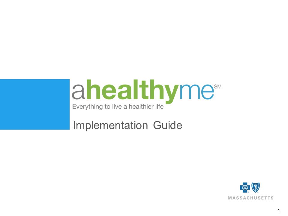 1 Implementation Guide