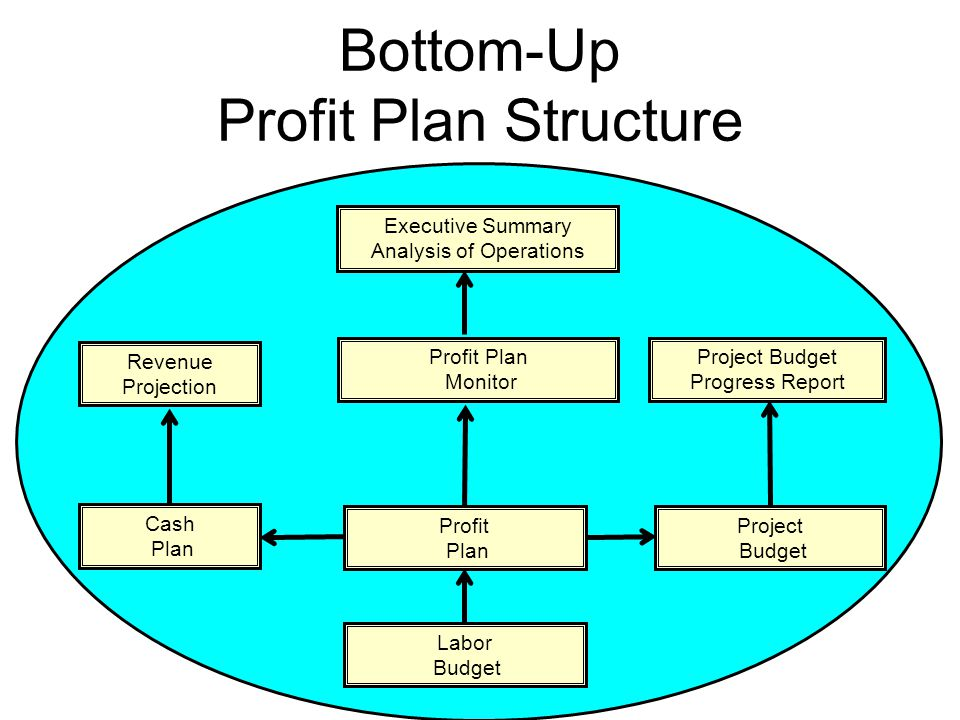 7 Bottom-Up Profit Plan Structure Profit Plan Revenue Projection Profit Plan Monitor Labor Budget Project Budget Progress Report Executive Summary Analysis of Operations Project Budget Cash Plan
