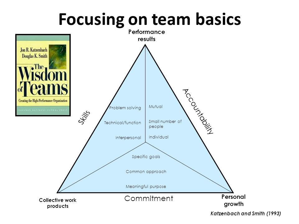 Focusing on team basics Katzenbach and Smith (1993) Problem solving Technical/function Interpersonal Mutual Small number of people Individual Specific goals Common approach Meaningful purpose Skills Accountability Commitment Collective work products Personal growth Performance results
