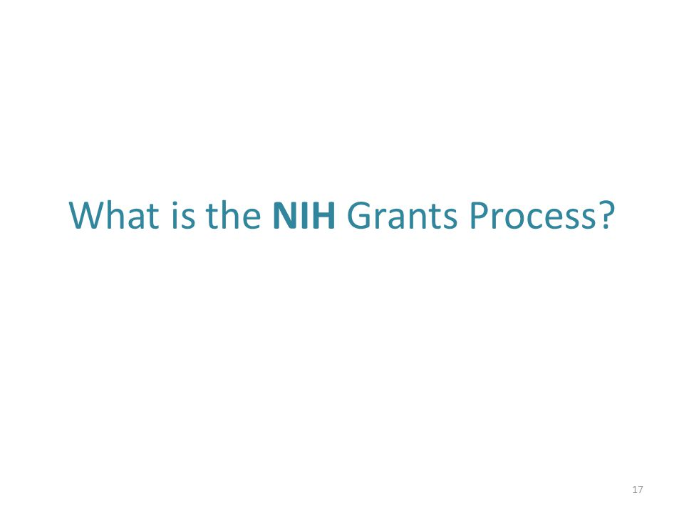 What is the NIH Grants Process? 17