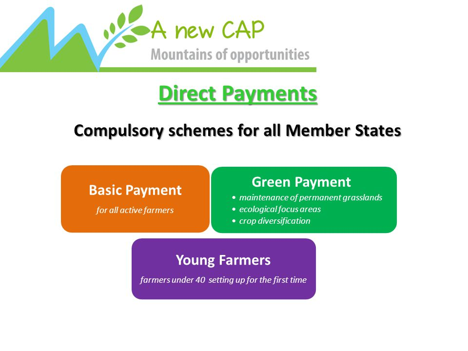 Direct Payments Compulsory schemes for all Member States Young Farmers farmers under 40 setting up for the first time Green Payment maintenance of permanent grasslands ecological focus areas crop diversification Basic Payment for all active farmers