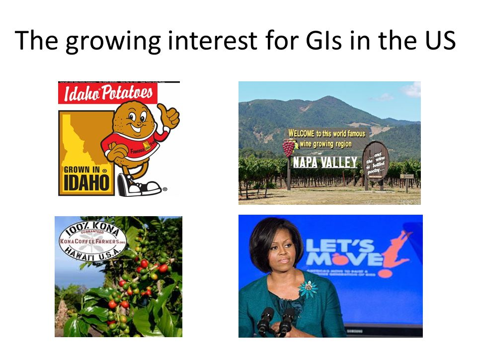 The growing interest for GIs in the US