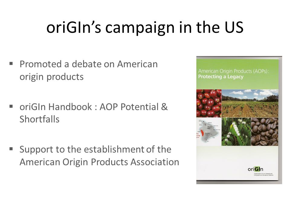 oriGIn's campaign in the US  Promoted a debate on American origin products  oriGIn Handbook : AOP Potential & Shortfalls  Support to the establishm