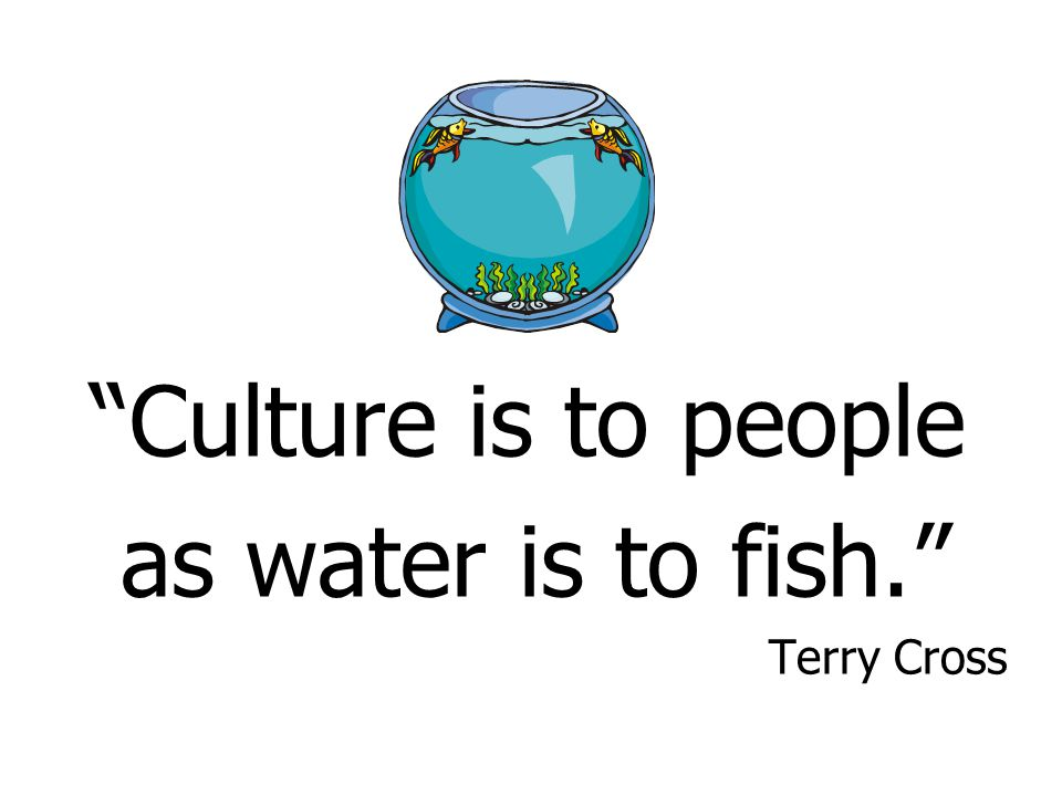 Culture is to people as water is to fish. Terry Cross