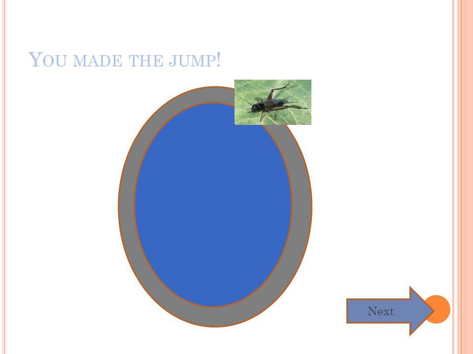 A WW, YOU DIDN ' T MAKE THE JUMP. Y OU DIE. Home