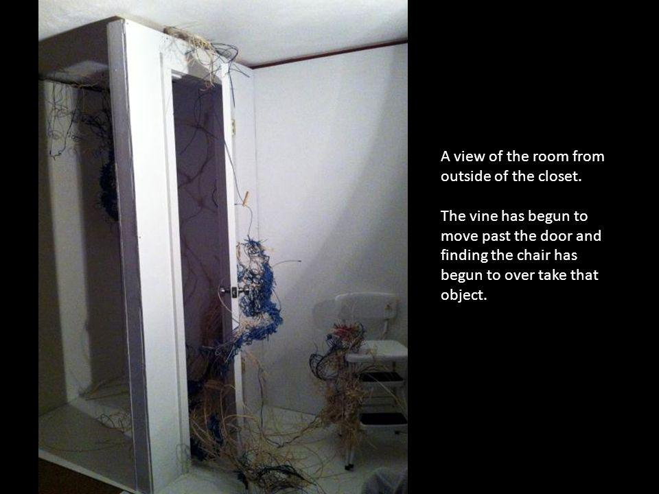 A view of the room from outside of the closet.