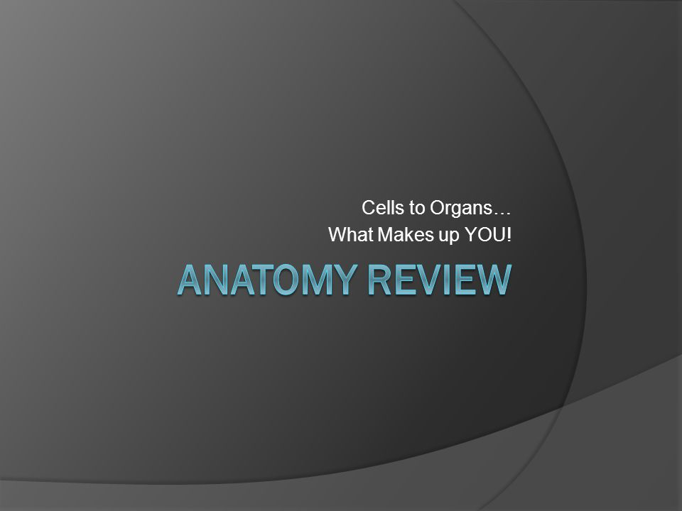 Cells to Organs… What Makes up YOU!