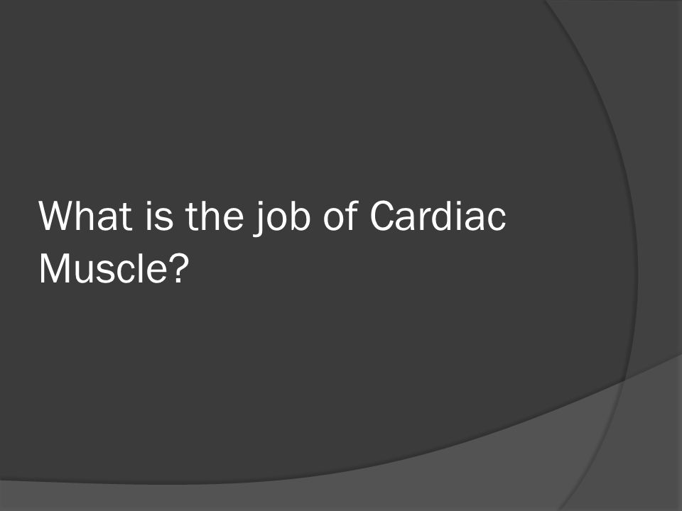 What is the job of Cardiac Muscle?