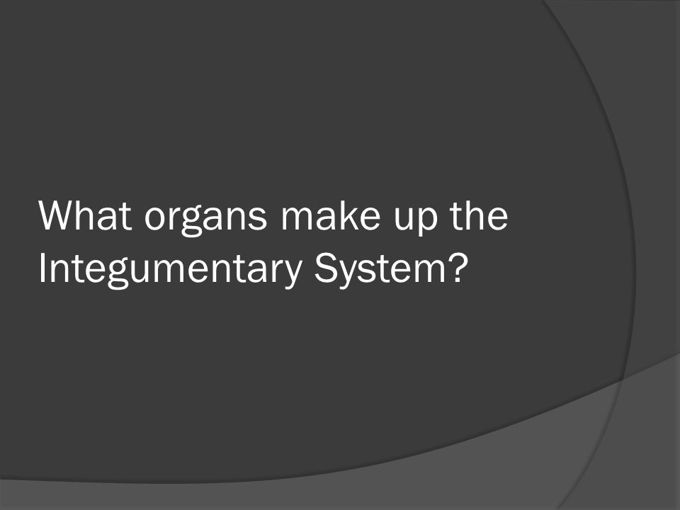 What organs make up the Integumentary System?