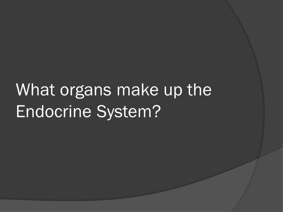 What organs make up the Endocrine System?