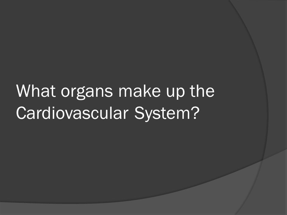 What organs make up the Cardiovascular System?