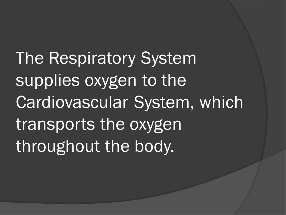 The Respiratory System supplies oxygen to the Cardiovascular System, which transports the oxygen throughout the body.