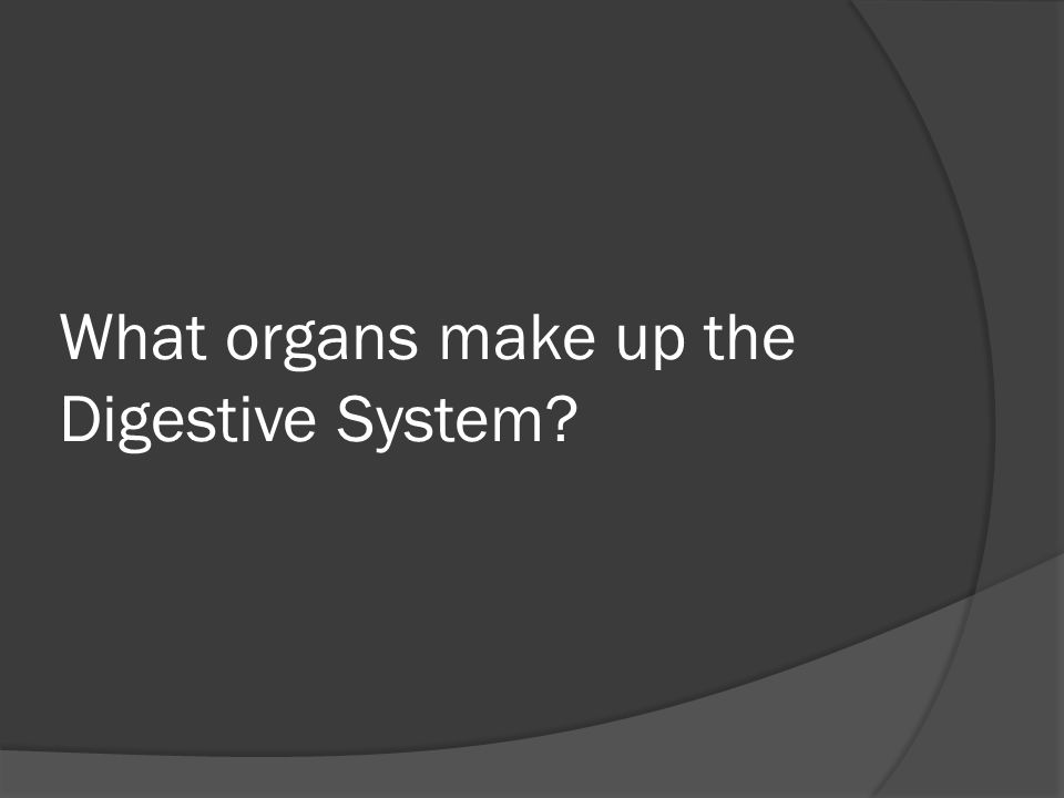 What organs make up the Digestive System?