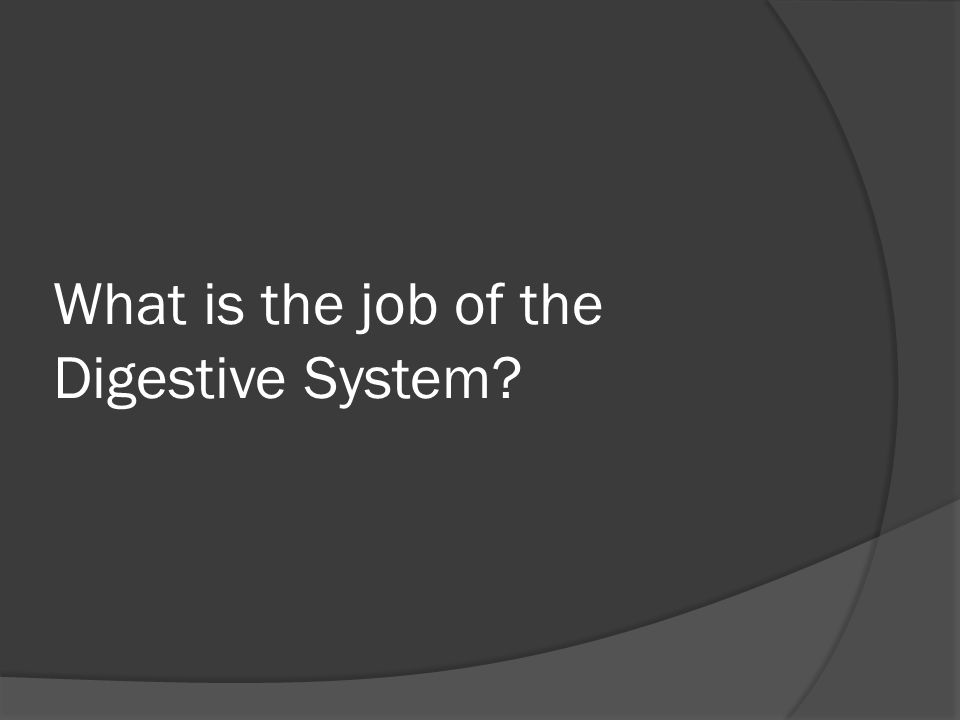 What is the job of the Digestive System?