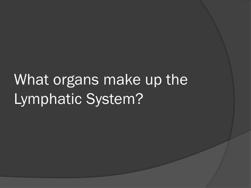 What organs make up the Lymphatic System?