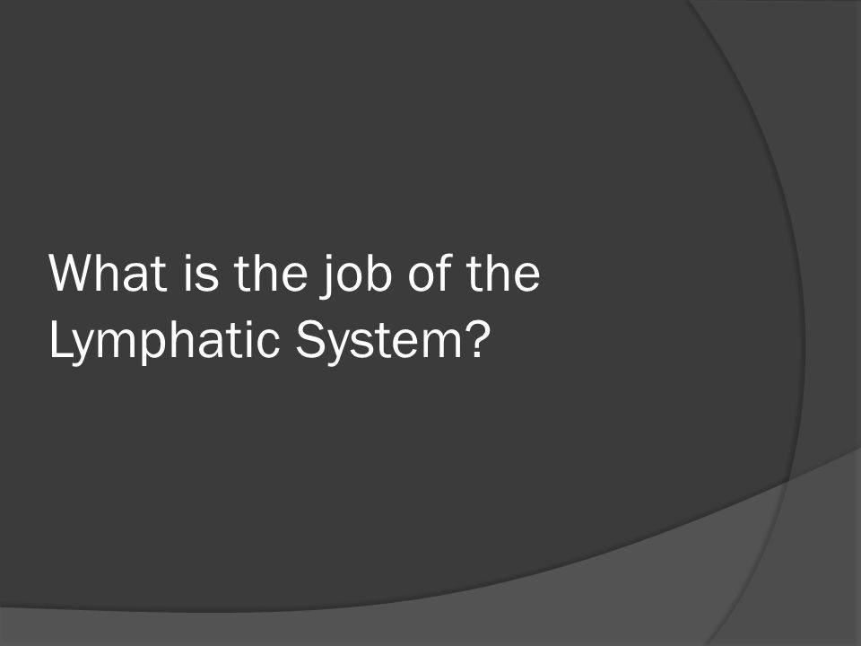 What is the job of the Lymphatic System?