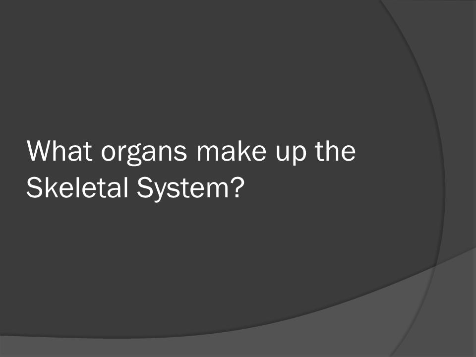 What organs make up the Skeletal System?