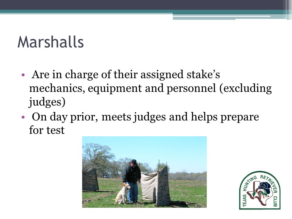 Marshalls Are in charge of their assigned stake's mechanics, equipment and personnel (excluding judges) On day prior, meets judges and helps prepare for test