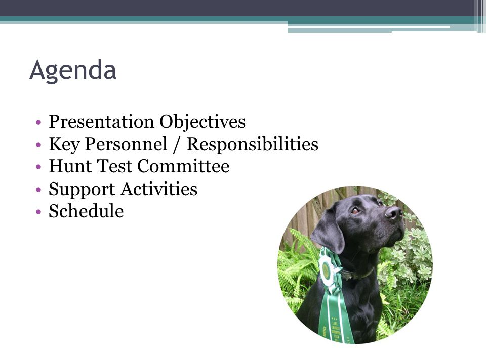 Agenda Presentation Objectives Key Personnel / Responsibilities Hunt Test Committee Support Activities Schedule