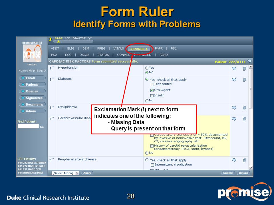 Form Ruler Identify Forms with Problems Exclamation Mark (!) next to form indicates one of the following: - - Missing Data - - Query is present on that form 28