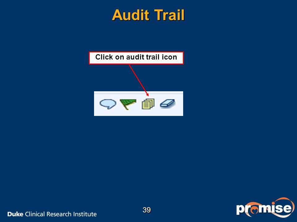 Audit Trail Click on audit trail icon 39
