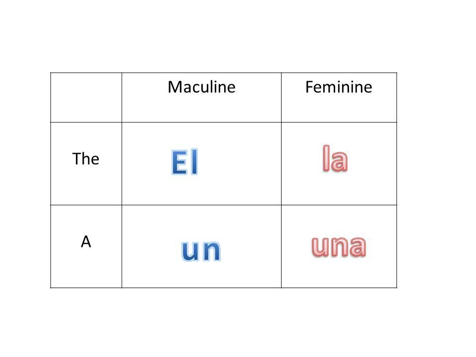 MaculineFeminine The A