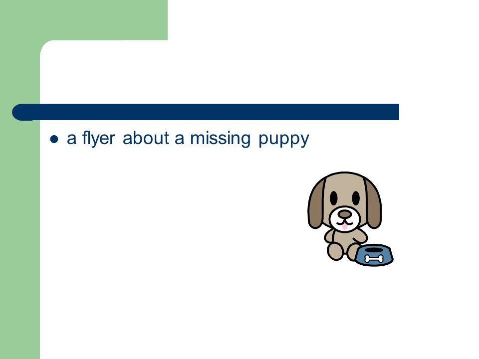 a flyer about a missing puppy