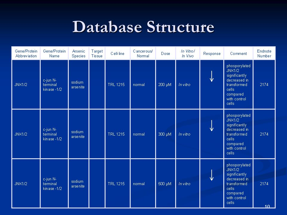 10 Database Structure