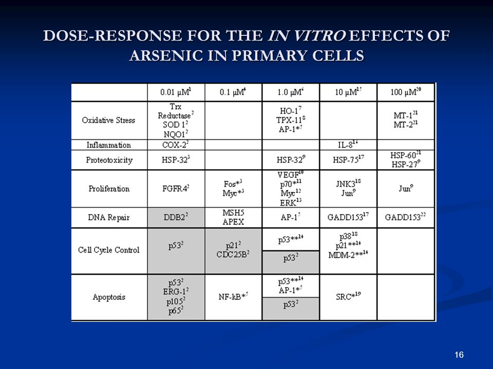 16 DOSE-RESPONSE FOR THE IN VITRO EFFECTS OF ARSENIC IN PRIMARY CELLS