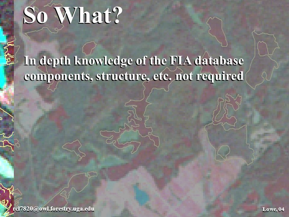 So What. Lowe, 04 rcl7820@owl.forestry.uga.edu Lowe, 04 So What.