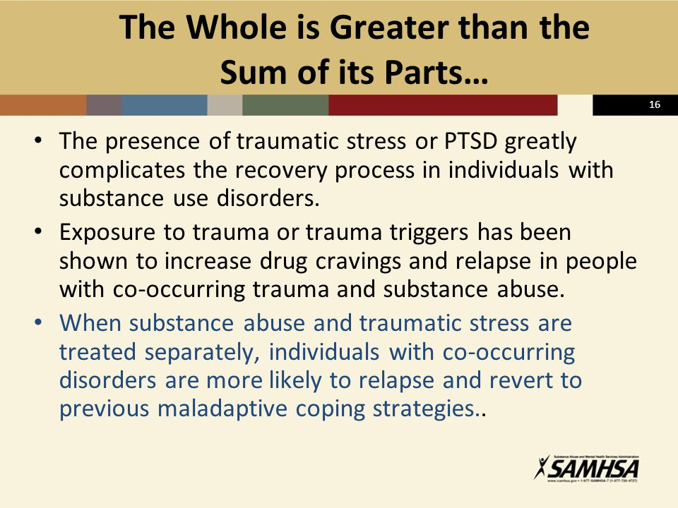 16 The Whole is Greater than the Sum of its Parts… The presence of traumatic stress or PTSD greatly complicates the recovery process in individuals wi