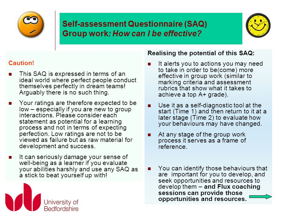 Self-assessment Questionnaire (SAQ) Group work: How can I be effective.