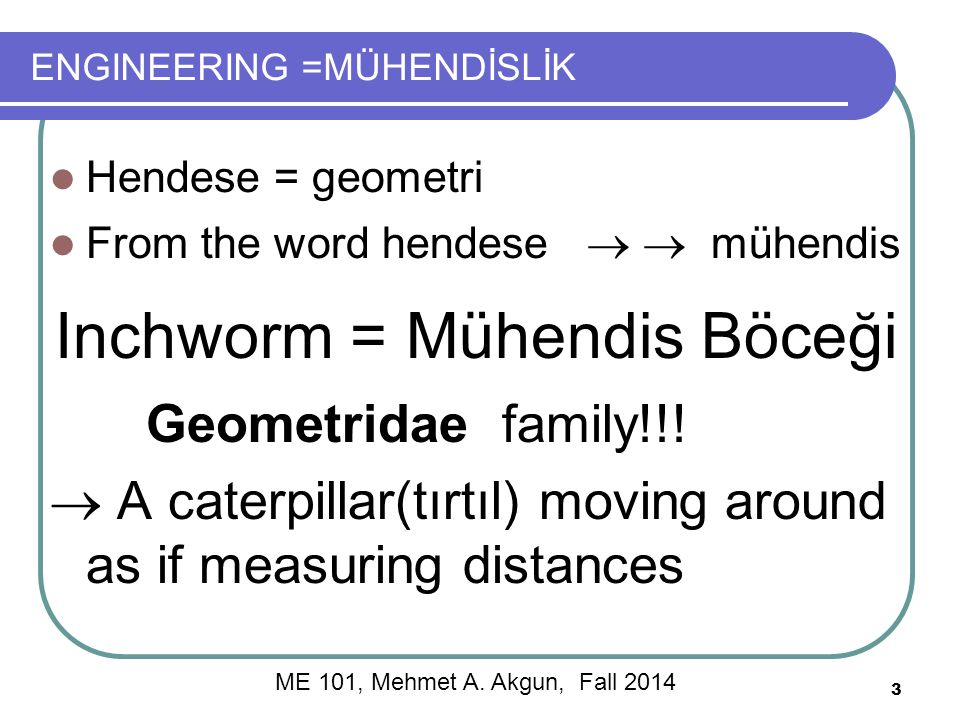 ENGINEERING =MÜHENDİSLİK Hendese = geometri From the word hendese   mühendis Inchworm = Mühendis Böceği Geometridae family!!.