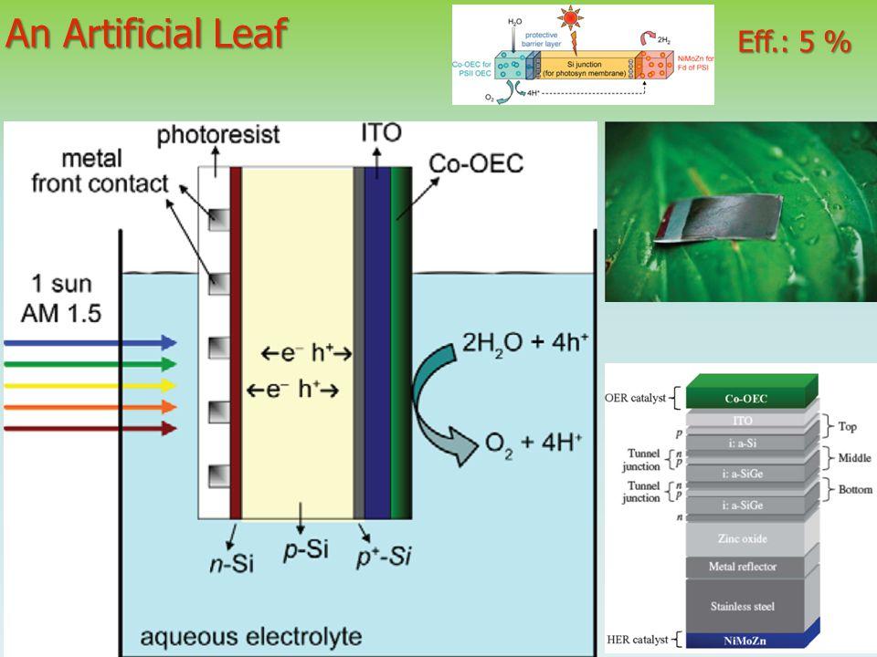 An Artificial Leaf Eff.: 5 %