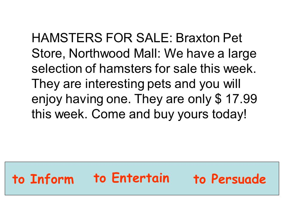 HAMSTERS FOR SALE: Braxton Pet Store, Northwood Mall: We have a large selection of hamsters for sale this week. They are interesting pets and you will