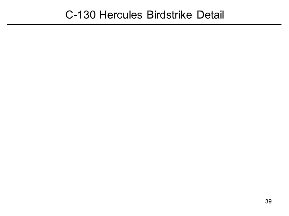 39 C-130 Hercules Birdstrike Detail