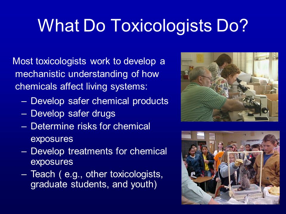 What Do Toxicologists Do.