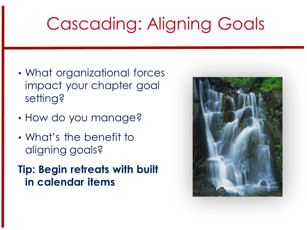What organizational forces impact your chapter goal setting.