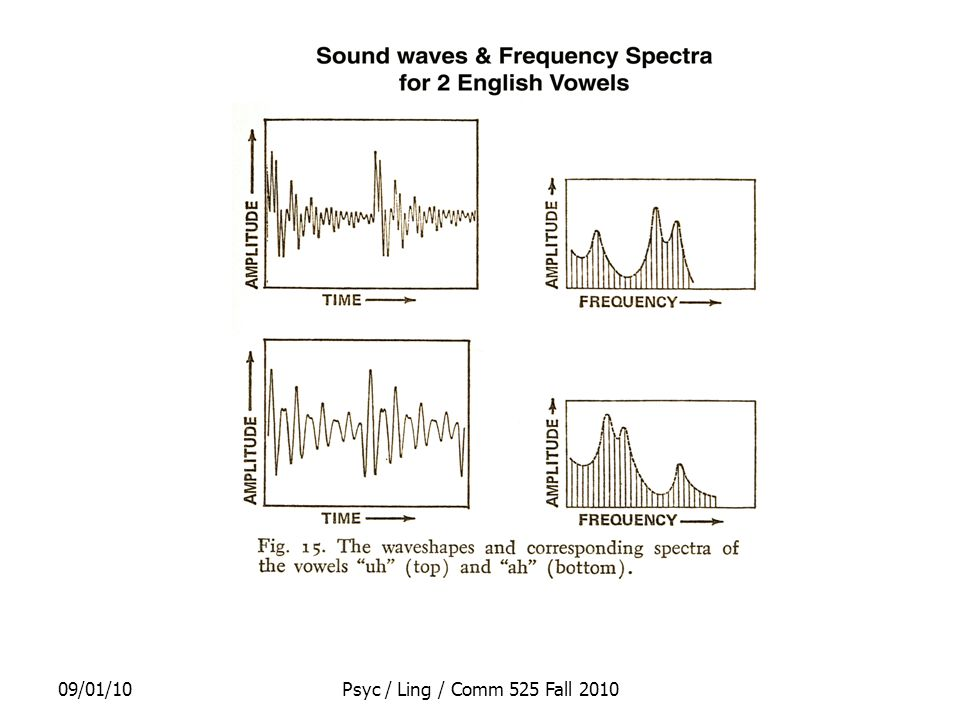 09/01/10Psyc / Ling / Comm 525 Fall 2010 Evidence about special status of speech perception Categorical Perception –Inability to hear differences between members of a category –where category = phoneme –e.g., variants of /p/ with different VOTs –Together with ability to hear differences of the same size when the 2 sounds are members of different categories –e.g., /p/ vs /b/ Adults can easily hear only the differences that are important in their language –e.g., English speakers easily hear difference between /r/ & /l/ i.e., they sound like different sounds –while Japanese speakers find it very hard to hear same diff i.e., they sound like the same sound