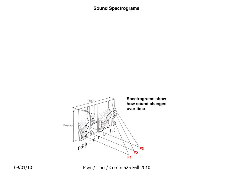 09/01/10Psyc / Ling / Comm 525 Fall 2010 McGurk Effect Visual cues in speech perception Conflicting acoustic and visual cues can lead to blended perception of sound –If there's a sound in the language that's close enough to the acoustic signal & fits with the visual cues
