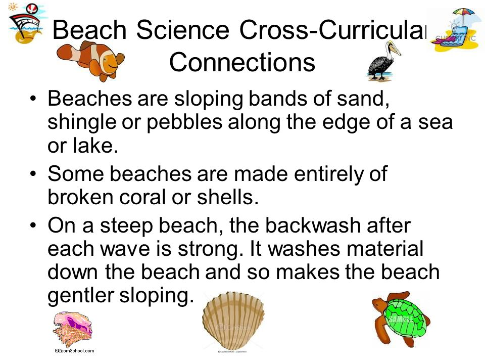 Beach Science Cross-Curricular Connections Beaches are sloping bands of sand, shingle or pebbles along the edge of a sea or lake.