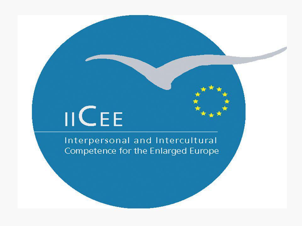 3. IICEE Project Partnership
