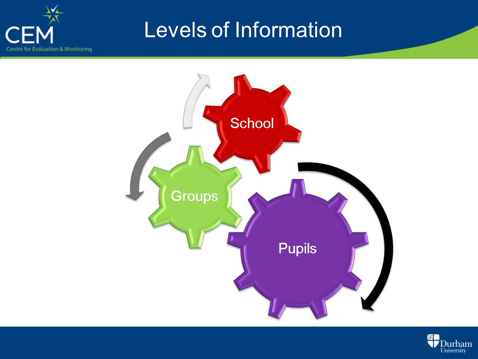Pupils Groups School Levels of Information
