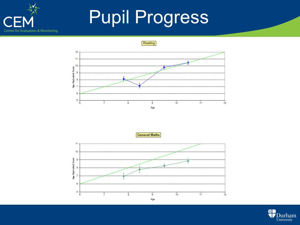 Pupil Progress
