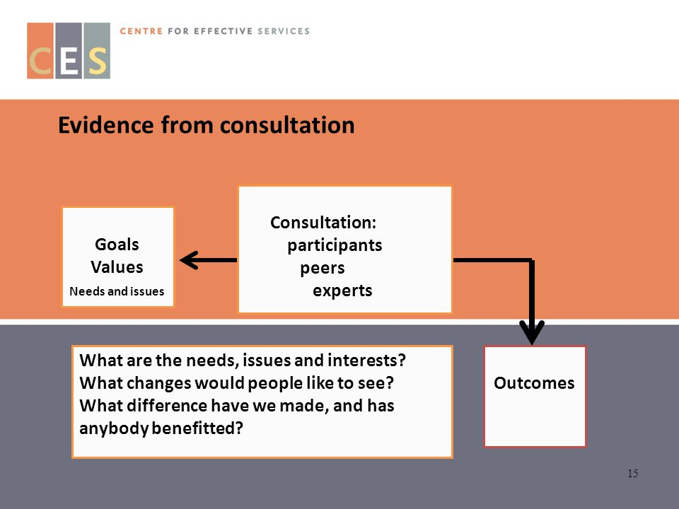 15 Outcomes Goals Values Needs and issues Consultation: participants peers experts Evidence from consultation What are the needs, issues and interests
