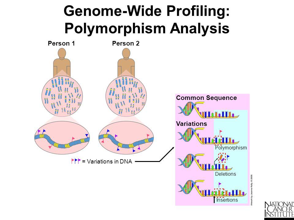 Genome-Wide Profiling: Gene Expression Profiles All LN+ breast tissue samples (metastatic) What does my patient's profile say about the diagnosis.